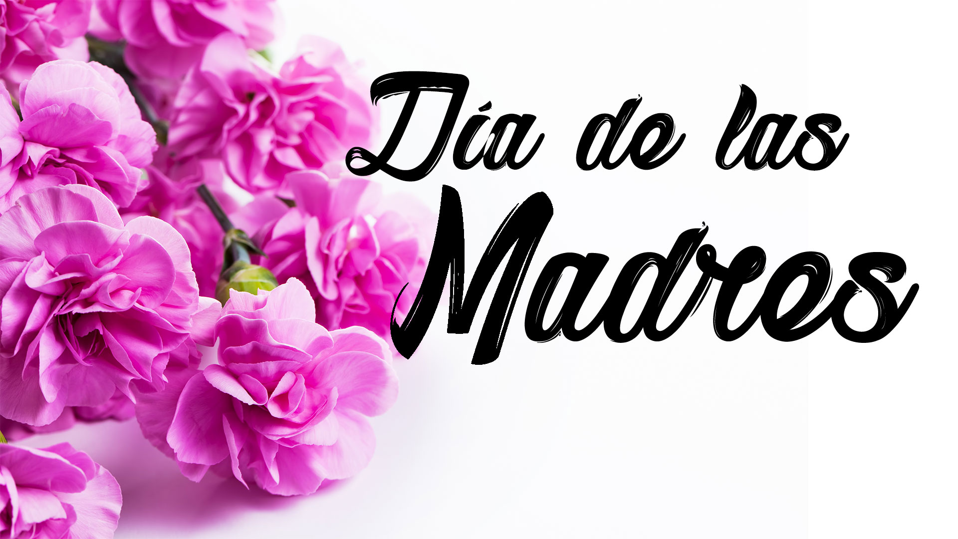 Celebra el Día de la Madre con nuestras promociones del mes de Mayo